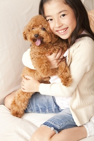 miniature red poodle and owner